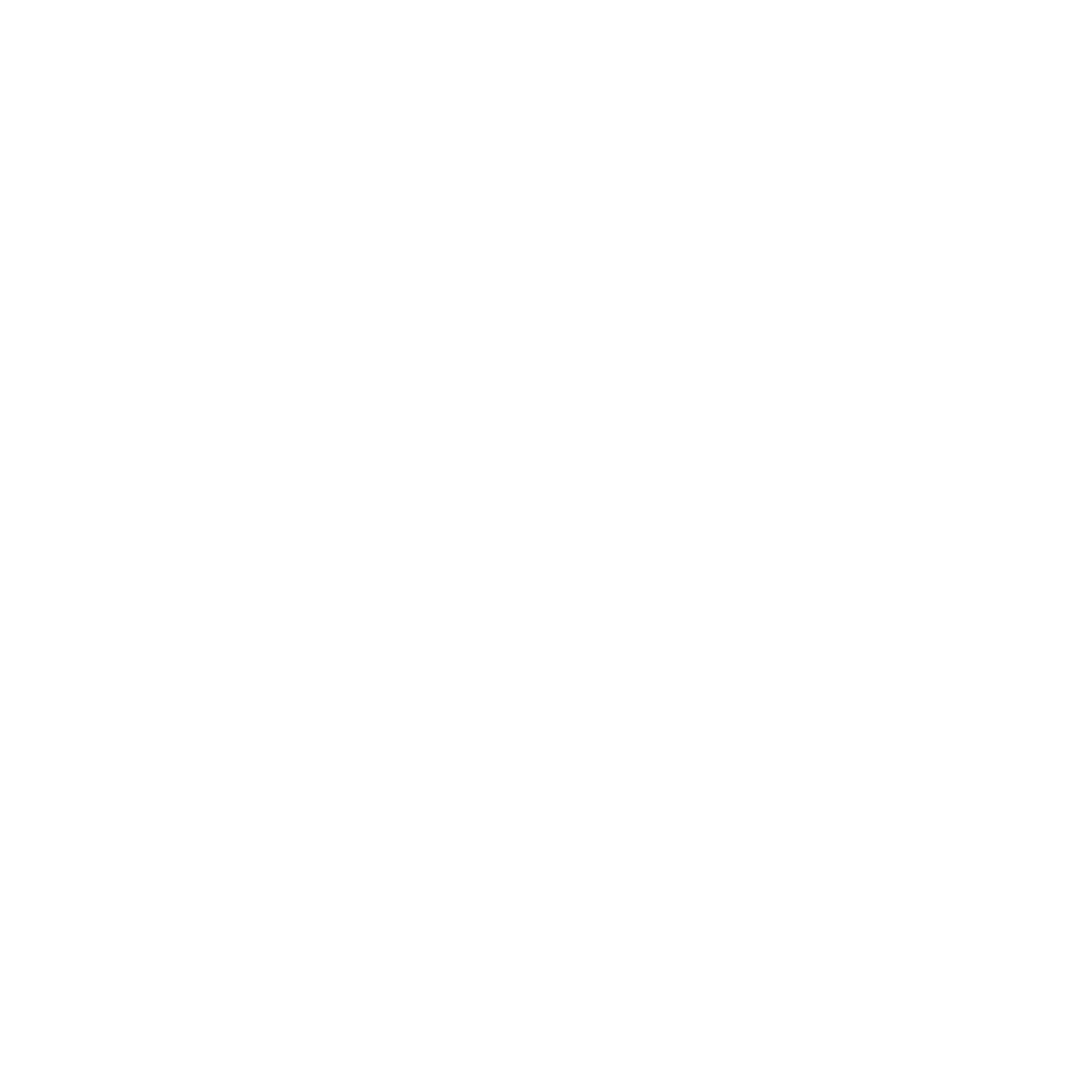 Downtown Frederick Wedding Walk